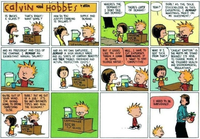 calvin-hobbes-crony-capitalismSource: http://dailybail.com/home/cartoon-calvin-and-hobbes-explain-modern-capitalism.html