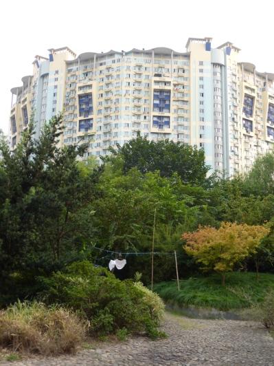 @ marjanslaats dying underwear in Mengqing park (Suzhou creek)