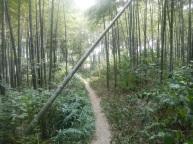 Hangzhou Mountain marathon source: http://ms2s.dk/hangzhou-mountain-marathon/